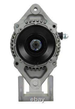 55A Lichtmaschine für 3TNV70 3TNV76 3TNV88 3TNV88F 4TNE84 4TNV88 4TNV98 4TNV98T