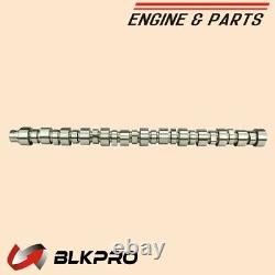 New Camshaft For 14L Cummins N14 Diesel Engine 3803738 3083932